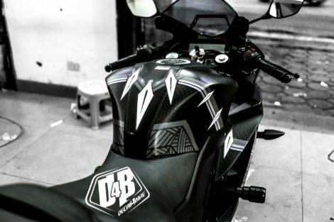 r15 black panther 3