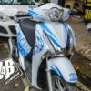 sh blue tiger 3
