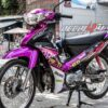 sr000068 sirius violet candy 2