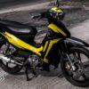 sr000080 sirius black yellow