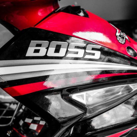 sirius red boss 2