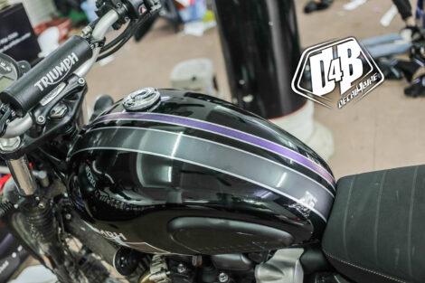 tp100006 triumph violet lighting 3