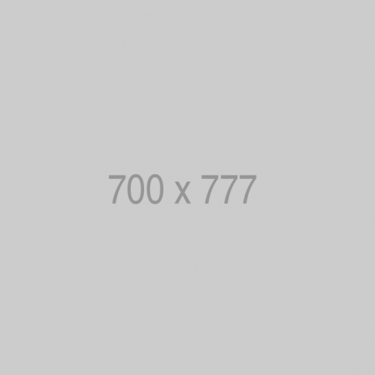 placehold.it 700x777 7